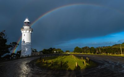 Table Cape Lighthouse Tours have recommenced